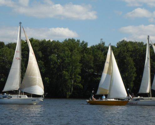 regate yachting